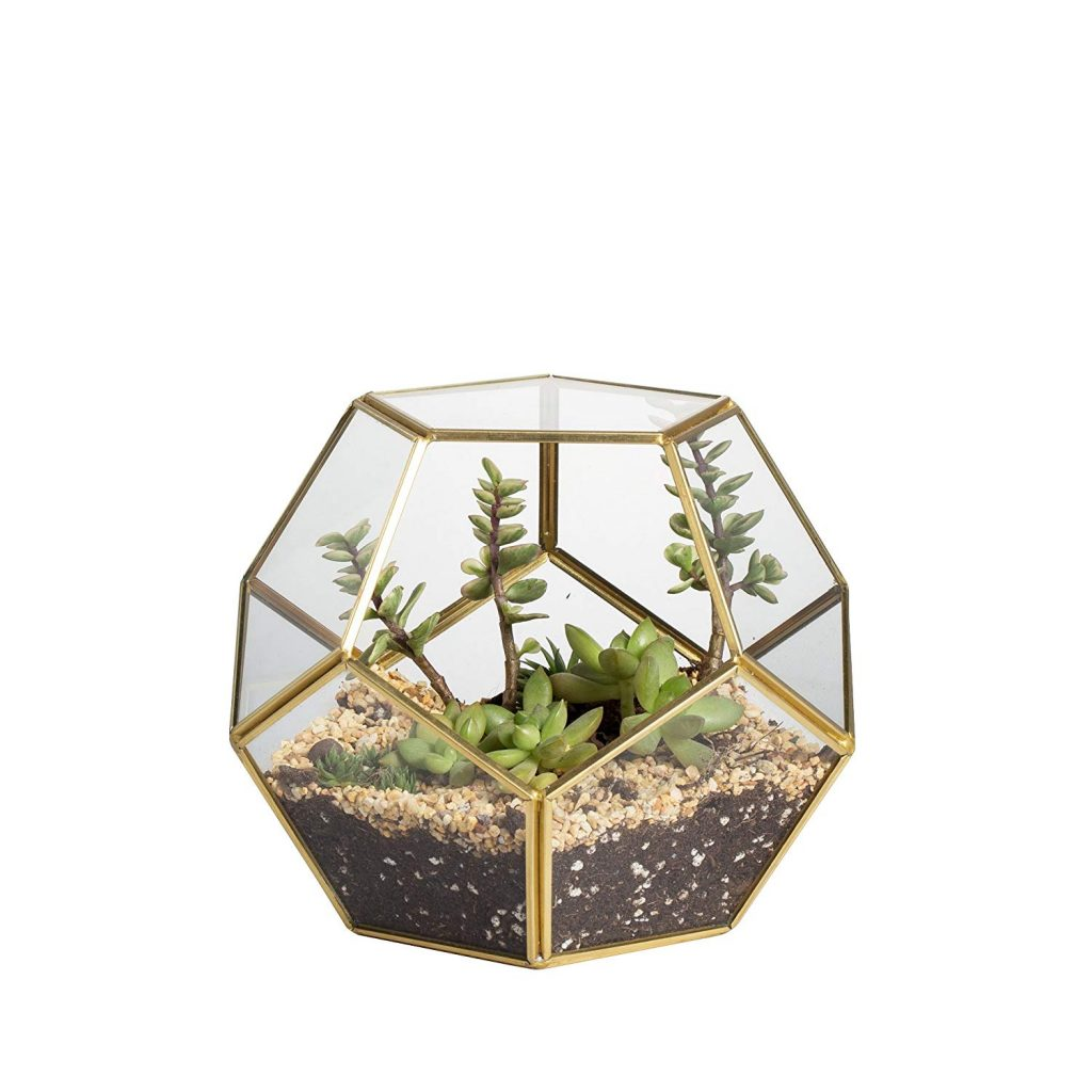 Octagonal Brass Terrarium