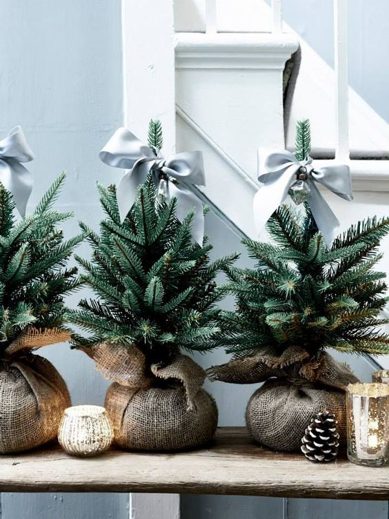 Mini Tree Satin Bow - 20 Gorgeous Christmas Tree Decoration Ideas To Try This Year: A simple mini evergreen for Christmas will do! Tie a satin bow ribbon as the Christmas tree topper for an elegant, simple but stylish decor piece around the holiday season. @chloedominik #minichristmastree #minichristmastreeideas #christmastreeideas #christmastreeinspiration #simplechristmastree #simplechristmastreedecor #christmastreetoppers
