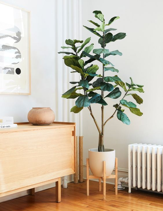 Styled Fiddle Leaf Corner - 7 Ways To Decorate An Empty Corner At Home: Using indoor plants and greenery is a simple way of hiding those empty corners in the home. Use real or faux plant like a fiddle leaf tree depending on the level of maintenance and use as many plants or as few as you like depending on what style you're going for. @chloedominik #emptycorner #emptycornerideas #fiddleleaftree #fiddleleaftreeincorner #stylingplantsindoor